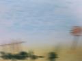 graham-fake-landscape-3-web